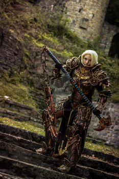 Crusader Female Diablo III Reaper of Souls by cyehra