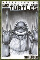 Raph's Got It Covered by BigChrisGallery