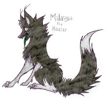 Midnight the Healer by FuneralDyingheart