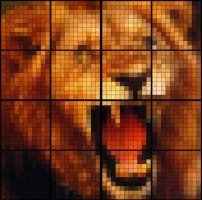 I'm a lion by fadingz