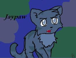 Jaypaw by anime-animal