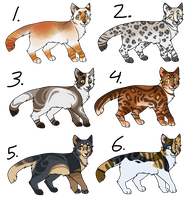 Cat Adoptables (CLOSED) by MeggisWolf