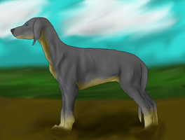 Dog dedign contest by patchesofheaven74