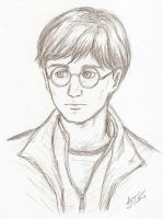 Harry Potter by theLostSindar