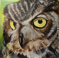 Owl by Launadoon