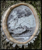 Painting in the natural frame...... by Yancis