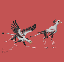 Secretarybird - Orniquad by Kanis-Major