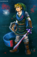 Hyrule Warriors Link by Cascadena
