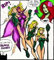 Black Orchid Animated Debut by johnnyharadrim
