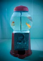 Fish Dispenser Part 1 by RED47