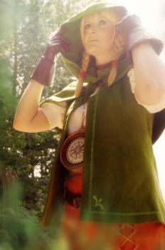 Linkle Cosplay - Hyrule Warriors by Fall3nW1ngs
