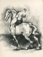 Man on white horse - study by erin-lokilani