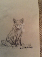 Fox Quick sketch by Latiasylveon