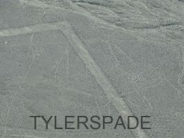 Nazca lines: The Whale by Tylerspade
