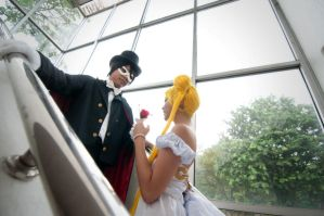 Tuxedo Mask And Serenity by Sparda-Dante