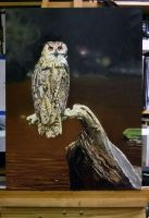 WIP-10 Eagle Owl in oils by NorthumbrianArtist