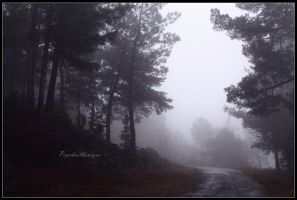 Entrance Into Nothingness by Psychasthenique