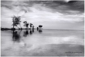 Tidung Island 4 by curioslife