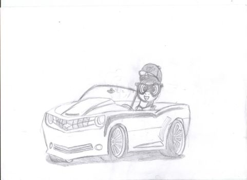 me on my camaro by theo46
