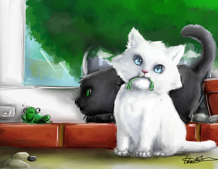 Kittens and frogs by weixwei
