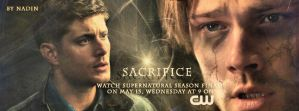 Season 8 Finale (Banner for Timeline) by Nadin7Angel