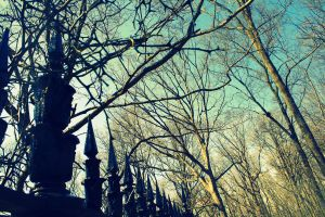 The graveyard's gates. by metroepidemic