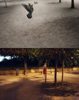 Tuileries by lawrencew