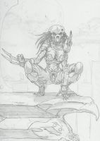 Female Predator sketch by -vassago-