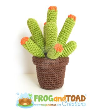 Cactus - Citron Boule / Lemon Ball by FROG-and-TOAD