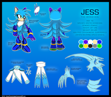 Jess the Hedgehog Reference 2012 by Nero-Blackwing
