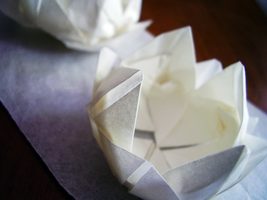 paper flowers. by awfultosee