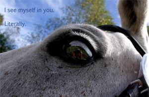 I see myself in you by 04katty