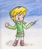 SSBB: Toon Link by tooncellos219