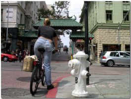To China on a bike by fl8us