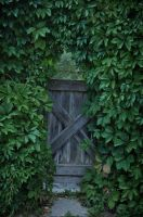 Foliage Door by Kechake-stock