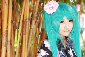 Vocaloid Yukata - Miku by Xeno-Photography