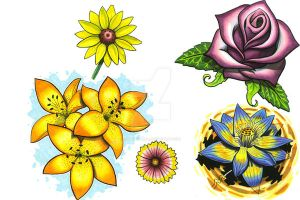 Flower Flash Sheet by curtiscflush