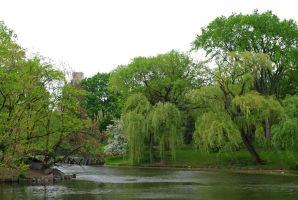 Central Park 16 by LucieG-Stock