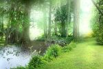 Premade Background 56 by nudagimo