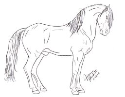 Andalusian Lineart by GoaliGrlTilDeath
