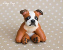 Oscar the Bulldog sculpture commission by SculptedPups