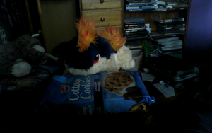 Kemuri Conquered the Cookie Container x3 by BudCharles