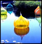 Floating Chihuly Glass Globes by rioka