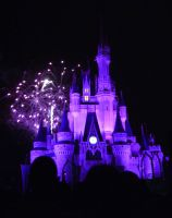 Wishes, 2009 - 5 by CanisCamera