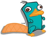 Perry the Platypus: Detailed by HappyEvilLove
