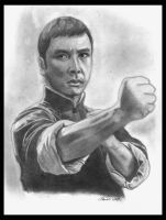 Donnie Yen as Ip man by Tomdal