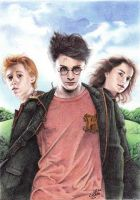 Ball pen art - Harry Potter by ArtisAllan