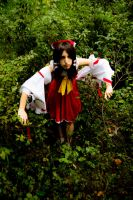 Defeated Reimu 3 - Got thrown in the woods by simakai