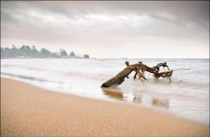 Lonely Shore by Sarah--Lynne