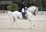 Dressage Cup_168 by CalyHoney